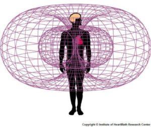 Heart-Electromagnetic_field1lasrge-300x252.jpg